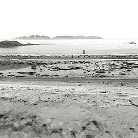Black Point Cove Beach by Catherine Melvin