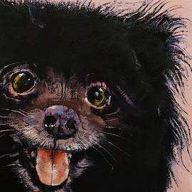 Michael Creese - Black Pomeranian