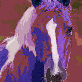 Blaze Profile - Painting by Ericamaxine Price