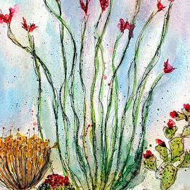Blooming Ocotillo by Barbara Chichester