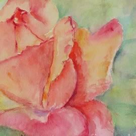 Blooming Rose by Laurie Morgan