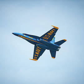 Blue Angel On High by Mark Duehmig