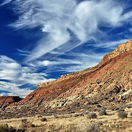 Blue Blue Desert Sky by Heidi Fickinger