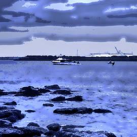 Blue Day In Botany Bay by Miroslava Jurcik