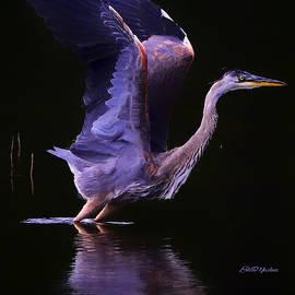 Blue Heron Take Off - Painting by Ericamaxine Price