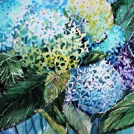 Blue Hydrangeas by Mindy Newman