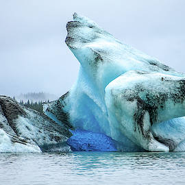 Blue Ice, Mendenhall Glacier by Dawn Richards