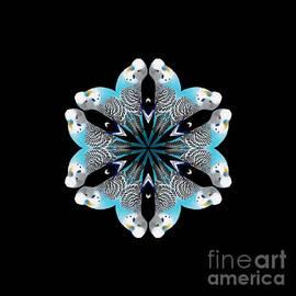 Blue Parakeet Mandala by Rachel Hannah