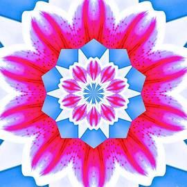 Blue Pink Flowers by Raven Deem
