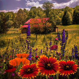 Blue Ridge Country Wildflowers on an Autumn Afternoon by Debra and Dave Vanderlaan