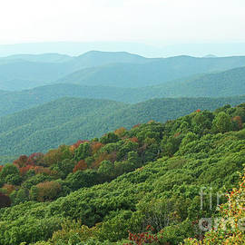 Blue Ridge Mountains in Early Fall from Bearfence Trail in Shenandoah National Park by Maili Page