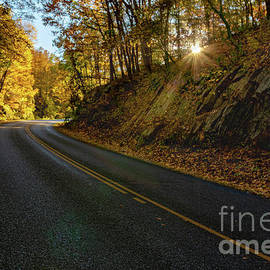 Blue Ridge Parkway Sunbeam by Norma Brandsberg