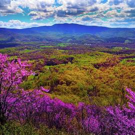 Blue Ridge Spring by Broken Soldier