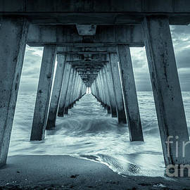 Blue Sunset at Venice Pier, Florida, Monochrome by Liesl Walsh