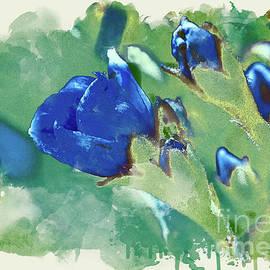 Blue by Susan Warren
