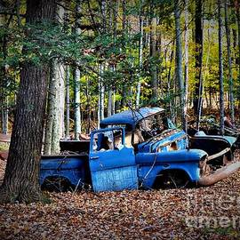 Blue Truck in the Forest by Suzanne Wilkinson