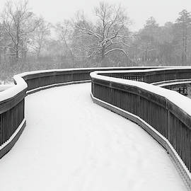 Boardwalk in Winter by Scott Rackers