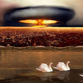 Bombs And Swans by Robert G Kernodle