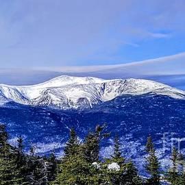 Born Wild - Mt. Washington, New Hampshire by Dave Pellegrini