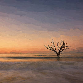Botany Bay Tree V by Jon Glaser