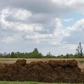 Bound Reeds by Anjo Ten Kate