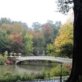 Bow Bridge in Autumn by Carol McGrath