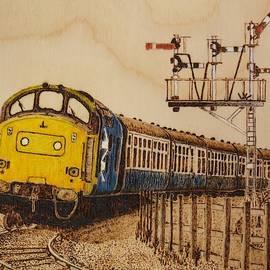 B.R Class 37 diesel locomotive by Brian Case