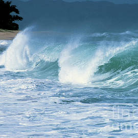 Breaking Wave North Shore by Thomas R Fletcher