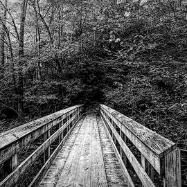 Bridge To Moore Cove Falls Black and White by Judy Vincent