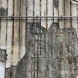 Bronx NYC Wall by Virginia Giblin