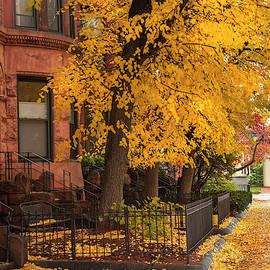 Brownstones In Autumn by Joann Vitali