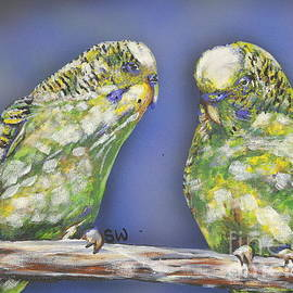 Budgie Love by Susan Willemse