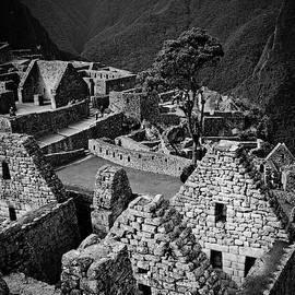 Paul Kerton - Buildings of Machu Picchu in Black and White
