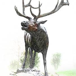 Bull Elk by Christina Rollo