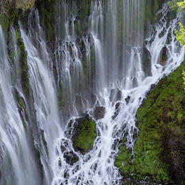 Burney Falls 5 by Tracy Knauer