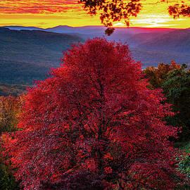 Burning Skies of Autumn At Artist Point - Mountainburg Arkansas by Gregory Ballos