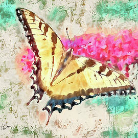 Butterfly Wings by Tina LeCour