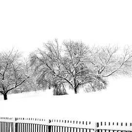 BW Winter by Lyuba Filatova
