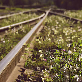 By Any Means XII - Photography SERIES - Landscape / Train Tracks by Nicole Chisholm