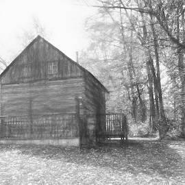 Cabin in the Woods by Maciek Froncisz