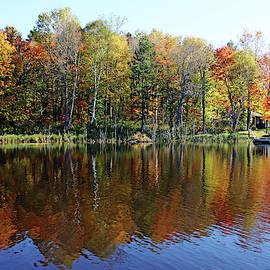 Cabin On The Point In Fall by Debbie Oppermann