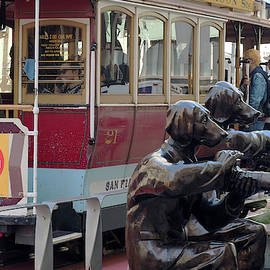 Cable Car And Paparazzi Dogs 2 by Dragan Kudjerski