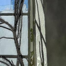 Cactus Abstract by Diana Rajala