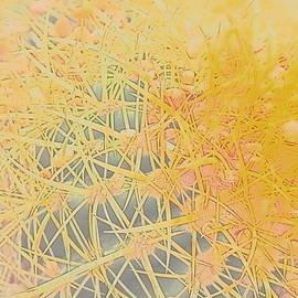 Cactus Digital Art by Loretta S