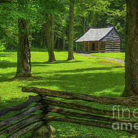 Carter Shields Cabin Cades Cove Great Smoky Mountains Historic Architecture Art by Reid Callaway