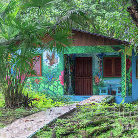 Cahuita Tropical Home by Norma Brandsberg