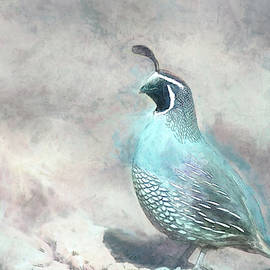 California Quail Painting by Terry Davis