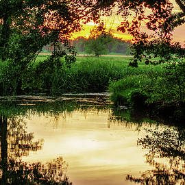 Calm In The Evening In The Spreewald by Sun Travels