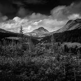 Canadian Rockies Black And White by Dan Sproul