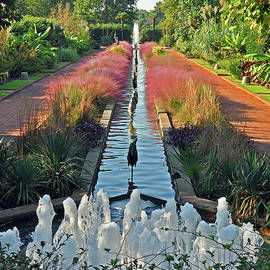 Canal Garden 2 by Lydia Holly